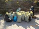 Над 15 тона отпадъци бяха събрани в Плевен на 14 септември