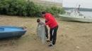 БДДР се включи в почистването на крайбрежието на Дунав в Лом, Байкал, Свищов и Русе