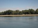 """Дунав – живата река"""
