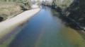 Няма мъртва риба по брега на Искър в района на Гиген