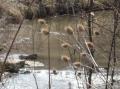 Вследствие нa валежи и снеготопене се очакват повишения на речните нива