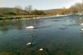 Възможни са повишения на нивата в долните течения на основните реки